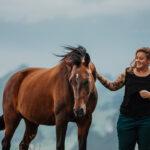 Horse-Balance