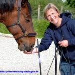 Mobiles Pferdetraining Mayer