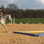 Nadine Klindworth – Pferdetraining, klassische Bodenarbeit und Reitunterricht