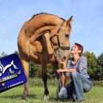DanPet Pferdetraining /Soletherapie