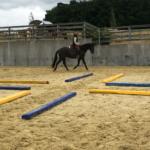 Pferdetraining Taunus & Saarland Blieskastel