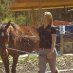 Equissima Pferdetraining