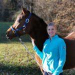 Pferdetraining – Melanie Erlmoser