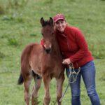 Pferde-Physiotherapie Eva Ortner