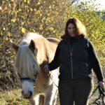 Pferdetraining Hinterland