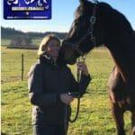 Pferdetraining blau/gelb im Tölzer Land