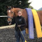 Pferdetraining blau gelb im Elztal