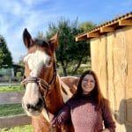 Training pro Pferd Myrielle Hely